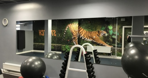Internal wall paper for Gym