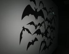 Dracula Theme by Donridge
